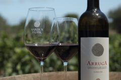 Our wine: Carignano Del Sulcis