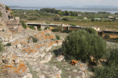 The Archaeological Museum and the Tophet